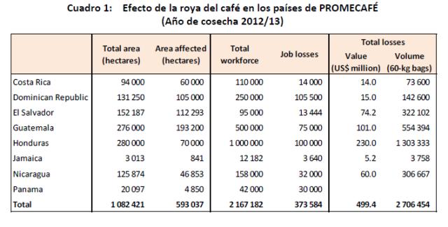 Hectáreas de cultivo de café afectadas por la Roya en América Latina - Fuente OIC