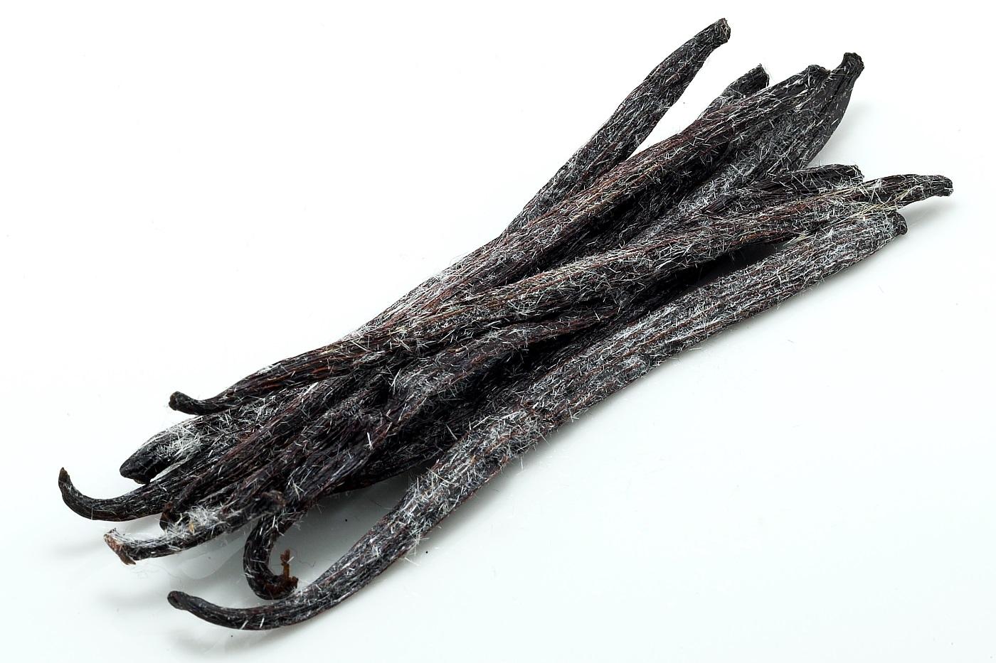 Resultado de imagen de vara de vainilla