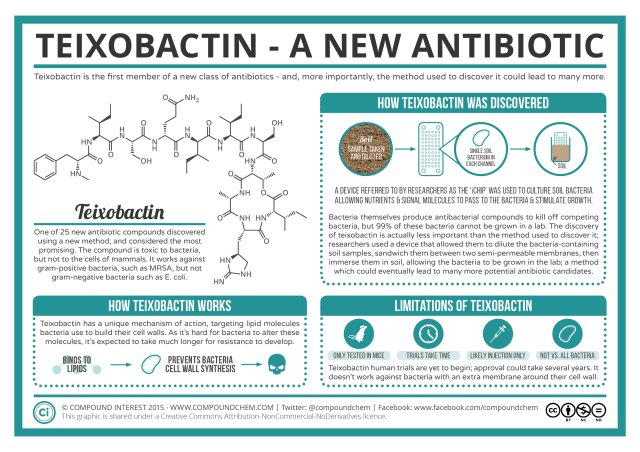 Teixobactin-The-Newly-Discovered-Antibiotic